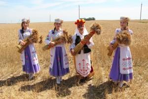 """Районный праздник """"Зажинки"""""""